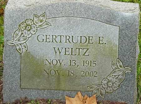WELTZ, GERTRUDE - Franklin County, Ohio   GERTRUDE WELTZ - Ohio Gravestone Photos