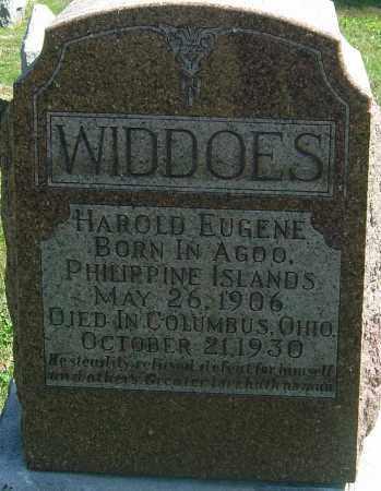 WIDDOES, HAROLD EUGENE - Franklin County, Ohio | HAROLD EUGENE WIDDOES - Ohio Gravestone Photos