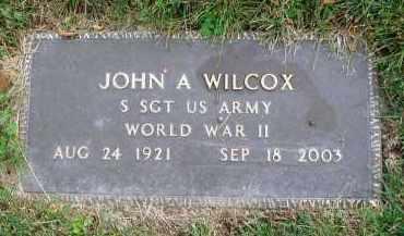 WILCOX, JOHN A. - Franklin County, Ohio | JOHN A. WILCOX - Ohio Gravestone Photos