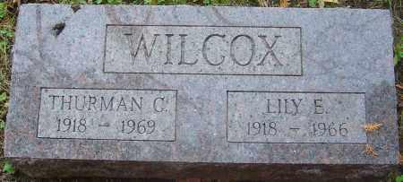 WILCOX, LILY ELIZABETH - Franklin County, Ohio | LILY ELIZABETH WILCOX - Ohio Gravestone Photos