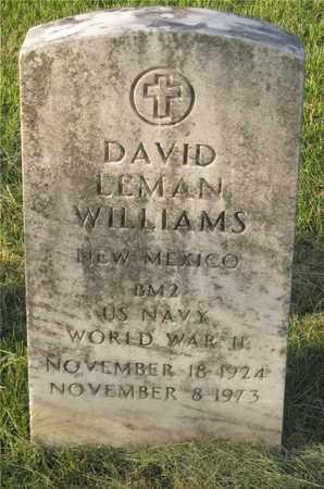 WILLIAMS, DAVID LEHMAN - Franklin County, Ohio | DAVID LEHMAN WILLIAMS - Ohio Gravestone Photos