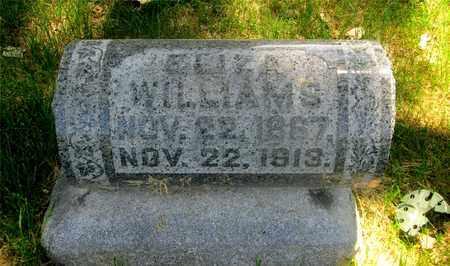 GORDON WILLIAMS, ELIZA - Franklin County, Ohio   ELIZA GORDON WILLIAMS - Ohio Gravestone Photos