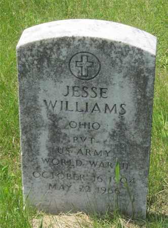 WILLIAMS, JESSE - Franklin County, Ohio | JESSE WILLIAMS - Ohio Gravestone Photos