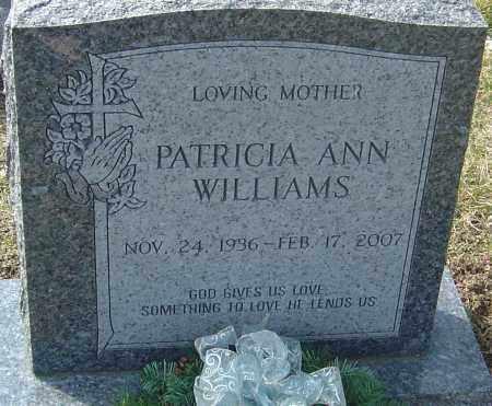 WILLIAMS, PATRICIA ANN - Franklin County, Ohio | PATRICIA ANN WILLIAMS - Ohio Gravestone Photos