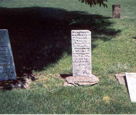 WILLIE, WILLIAM - Franklin County, Ohio | WILLIAM WILLIE - Ohio Gravestone Photos