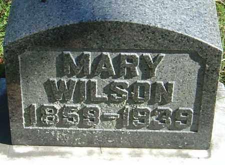WELLWOOD WILSON, MARY - Franklin County, Ohio | MARY WELLWOOD WILSON - Ohio Gravestone Photos