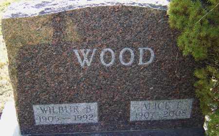 WOOD, ALICE E - Franklin County, Ohio | ALICE E WOOD - Ohio Gravestone Photos