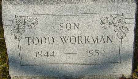 WORKMAN, TODD - Franklin County, Ohio | TODD WORKMAN - Ohio Gravestone Photos