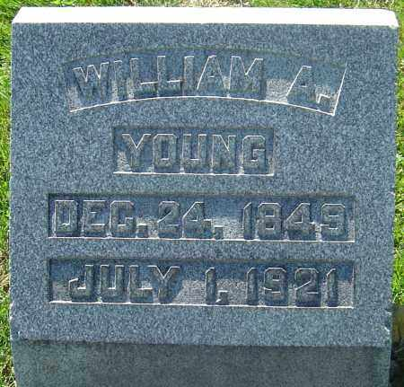 YOUNG, WILLIAM ALCESTER - Franklin County, Ohio | WILLIAM ALCESTER YOUNG - Ohio Gravestone Photos