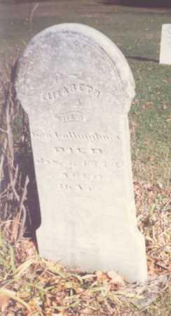 LARDER COTTINGHAM, ELIZABETH - Fulton County, Ohio | ELIZABETH LARDER COTTINGHAM - Ohio Gravestone Photos