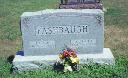 FASHBAUGH, ALICE - Fulton County, Ohio   ALICE FASHBAUGH - Ohio Gravestone Photos