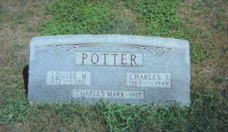 POTTER, CHARLES JEFFERSON - Fulton County, Ohio | CHARLES JEFFERSON POTTER - Ohio Gravestone Photos