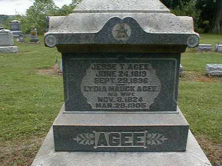 AGEE, LYDIA - Gallia County, Ohio   LYDIA AGEE - Ohio Gravestone Photos