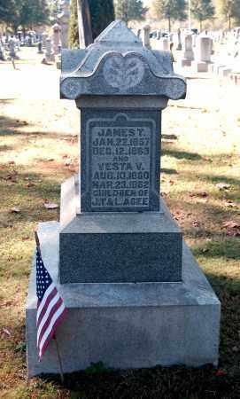 AGEE, JAMES T - Gallia County, Ohio | JAMES T AGEE - Ohio Gravestone Photos