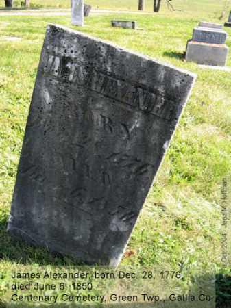 ALEXANDER, JAMES - Gallia County, Ohio | JAMES ALEXANDER - Ohio Gravestone Photos