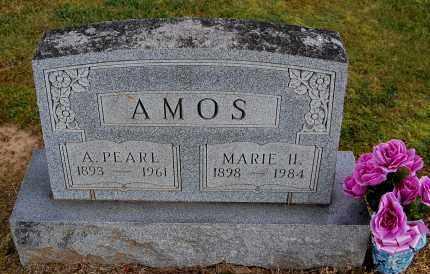 AMOS, MARIE H - Gallia County, Ohio | MARIE H AMOS - Ohio Gravestone Photos
