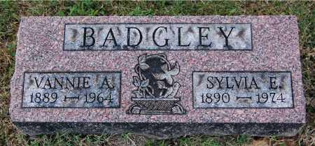 BADGLEY, SYLVIA E - Gallia County, Ohio | SYLVIA E BADGLEY - Ohio Gravestone Photos