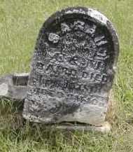 BAIRD, SARAH - Gallia County, Ohio | SARAH BAIRD - Ohio Gravestone Photos