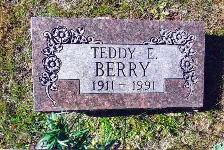BERRY, TEDDY E. - Gallia County, Ohio   TEDDY E. BERRY - Ohio Gravestone Photos