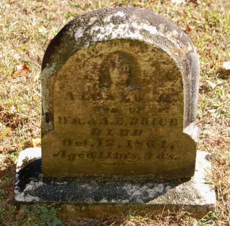 BOICE, ALONZO M - Gallia County, Ohio   ALONZO M BOICE - Ohio Gravestone Photos