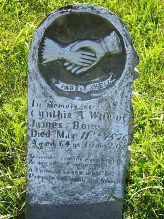 BOICE, JAMES - Gallia County, Ohio | JAMES BOICE - Ohio Gravestone Photos
