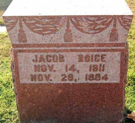BOICE, JACOB - Gallia County, Ohio | JACOB BOICE - Ohio Gravestone Photos