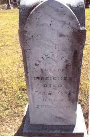 BRICKER, ELIZABETH - Gallia County, Ohio | ELIZABETH BRICKER - Ohio Gravestone Photos