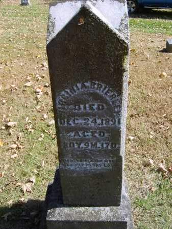 BRIERLEY, VIRGINIA - Gallia County, Ohio | VIRGINIA BRIERLEY - Ohio Gravestone Photos