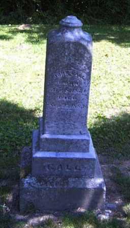 CALL, JOHN - Gallia County, Ohio   JOHN CALL - Ohio Gravestone Photos