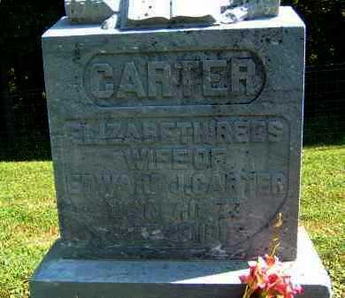 REES CARTER, ELIZABETH - Gallia County, Ohio | ELIZABETH REES CARTER - Ohio Gravestone Photos