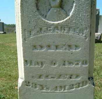 CARTER, T. J. - Gallia County, Ohio | T. J. CARTER - Ohio Gravestone Photos