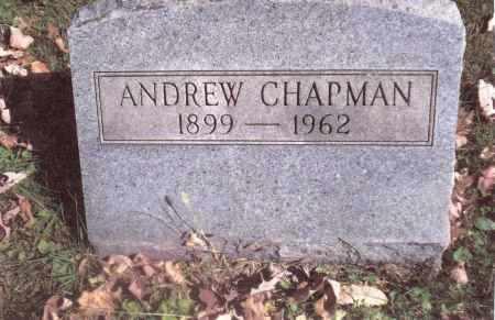 CHAPMAN, ANDREW - Gallia County, Ohio   ANDREW CHAPMAN - Ohio Gravestone Photos