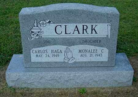 CLARK, CARLOS HAGA - Gallia County, Ohio | CARLOS HAGA CLARK - Ohio Gravestone Photos