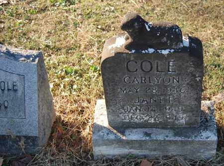 COLE, JANET - Gallia County, Ohio | JANET COLE - Ohio Gravestone Photos