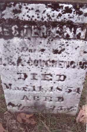 COUGHENOUR, HESTER ANN - Gallia County, Ohio | HESTER ANN COUGHENOUR - Ohio Gravestone Photos