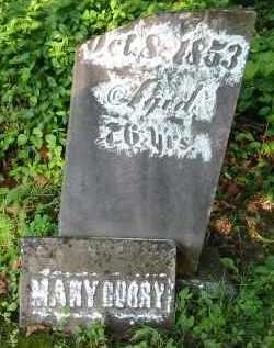 CURRY, MARY - Gallia County, Ohio   MARY CURRY - Ohio Gravestone Photos