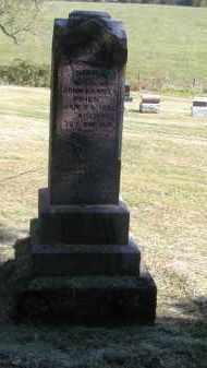 DANIELS, DELILA - Gallia County, Ohio | DELILA DANIELS - Ohio Gravestone Photos