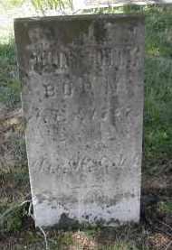 DENNEY, WILLIAM - Gallia County, Ohio | WILLIAM DENNEY - Ohio Gravestone Photos