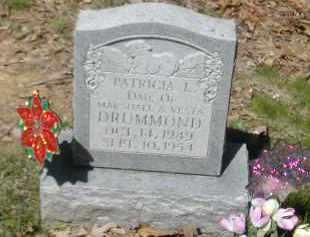 DRUMMOND, PATRICIA L. - Gallia County, Ohio | PATRICIA L. DRUMMOND - Ohio Gravestone Photos
