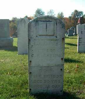 EAKINS, ANNE - Gallia County, Ohio | ANNE EAKINS - Ohio Gravestone Photos
