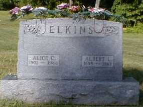 ELKINS, ALICE - Gallia County, Ohio | ALICE ELKINS - Ohio Gravestone Photos
