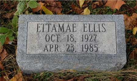 ELLIS, ETTAMAE - Gallia County, Ohio | ETTAMAE ELLIS - Ohio Gravestone Photos