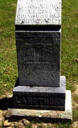 LANDTHORN ELLIS, LETTA E. - Gallia County, Ohio | LETTA E. LANDTHORN ELLIS - Ohio Gravestone Photos