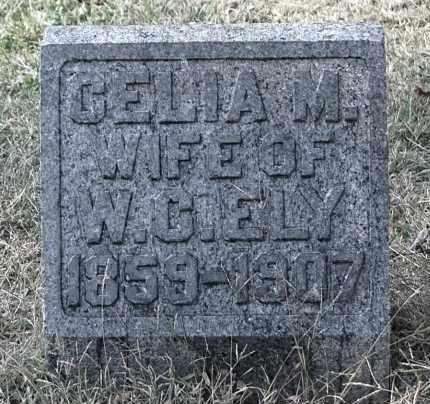 ELY, CELIA M - Gallia County, Ohio | CELIA M ELY - Ohio Gravestone Photos