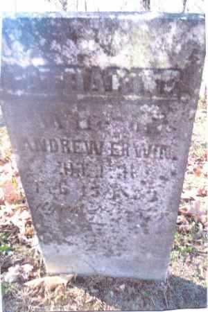 ERWIN, CATHARINE - Gallia County, Ohio | CATHARINE ERWIN - Ohio Gravestone Photos
