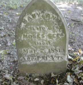 FEE, MARY - Gallia County, Ohio | MARY FEE - Ohio Gravestone Photos