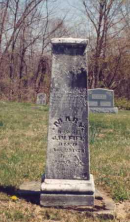 FIFE, MARY - Gallia County, Ohio | MARY FIFE - Ohio Gravestone Photos
