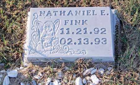 FINK, NATHANIEL E - Gallia County, Ohio | NATHANIEL E FINK - Ohio Gravestone Photos