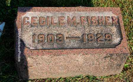 FISHER, CECILE M - Gallia County, Ohio | CECILE M FISHER - Ohio Gravestone Photos