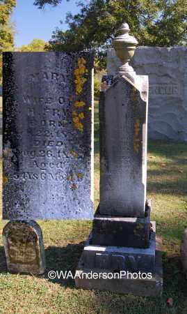 FRY, MARY - Gallia County, Ohio | MARY FRY - Ohio Gravestone Photos